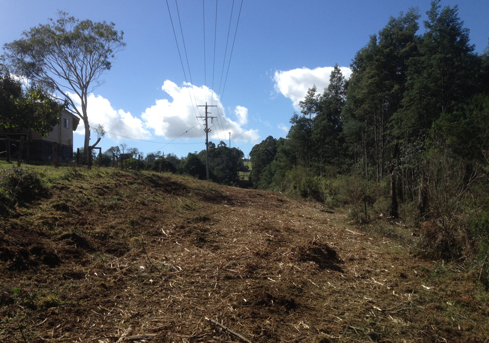 Powerline-Vegetation-Management